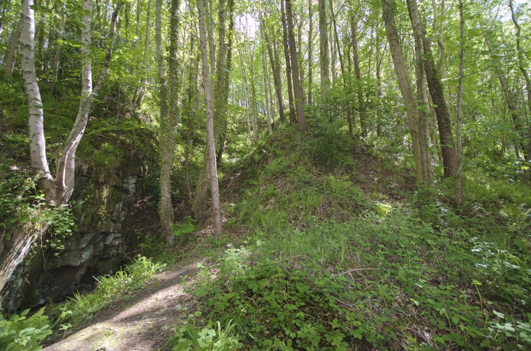 Looking up the side of the gorge to the probable location of the old  Morpeth dyke quarry left of the central mound.