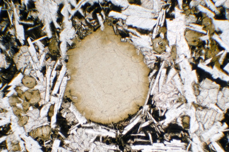An amygdaloid in the Morpeth dyke rock probably containing natrolite