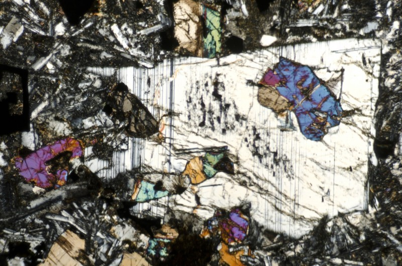 Plagioclase phenocryst with augite inclusions in a sample from the location at the NW end of the dyke (NZ208865)