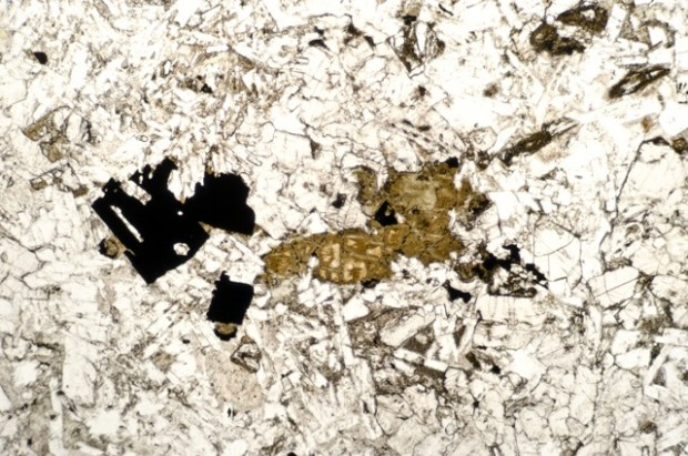 Pleochroic alteration mineral in a sample from the location at the NW end of the dyke (NZ208865) viewed in plane polarised light
