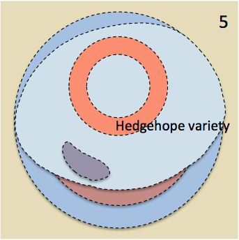 Fifth stage in a proposed sequence of intrusions of Cheviot granite - based on Al Hafdh