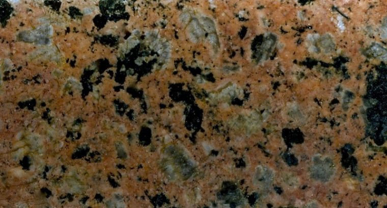 Fine-grained Central Belt granitic rock at location 4. Prepared hand sample viewed in reflected light