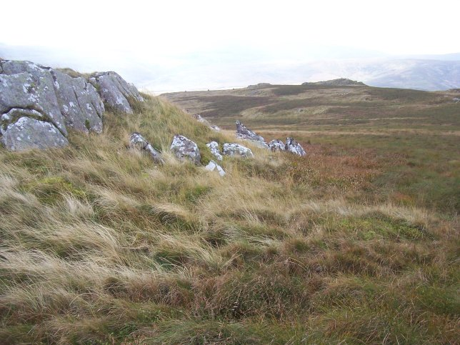 View from Long Crag of distant tors of coarser porphyritic