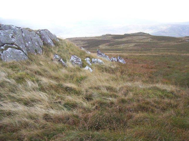 View from Long Crag of distant tors of coarser porphyritic