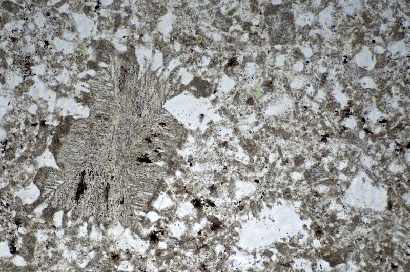 Thin section of felsite dyke with perthitic and micrographic textures, Linhope Spout viewed in plane polarised light
