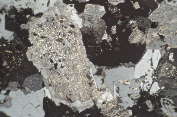 Subequigranular granitic rock from location 2, Hedgehope Hill. Most of the plagioclase in this altered rock is heavily sericitised.
