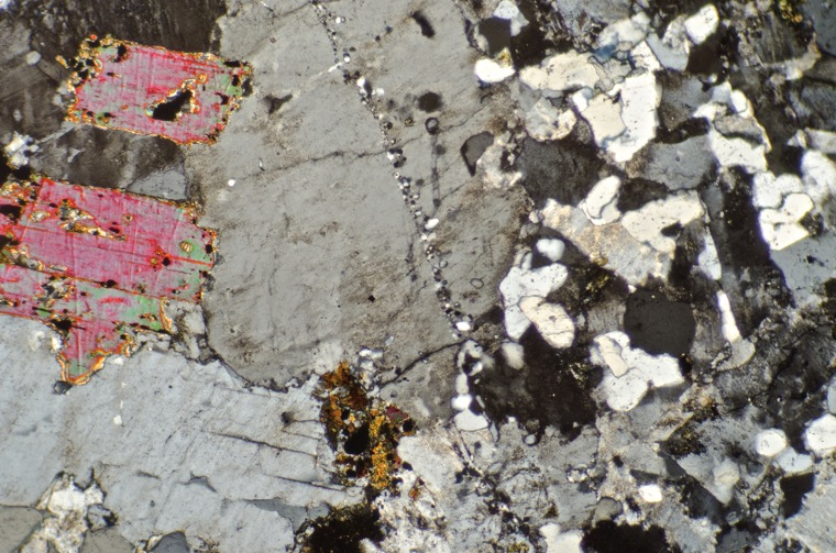 Quartz-porphyry dyke in contact with granitic host rock at location 5, Hedgehope Hill. Sample viewed with crossed polarising filters. Thin strings of quartz and feldspar blebs have formed along the cracks in the host rock