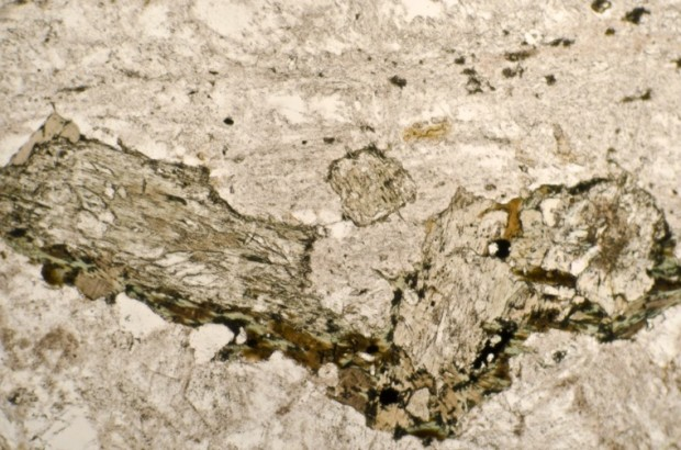 Plagioclase, pyroxene, quartz and associated alteration products in syeno-granite at location 3. Thin section viewed in plane polarised light.