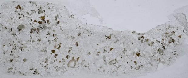 Syeno-granite  at location 5 Harthope Linn. Thin section viewed in plane polarised light.