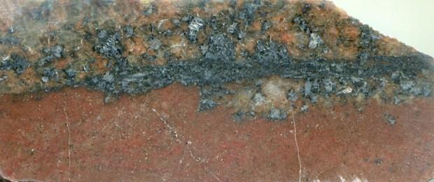 Prepared hand specimen of   syeno-granite   with a fine-grained intrusion at location 6, Harthope Linn (NT 9268 2017)