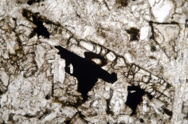 Elongated pyroxene string amongst plagioclase and opaques in Acklington dyke basalt at Swarland.