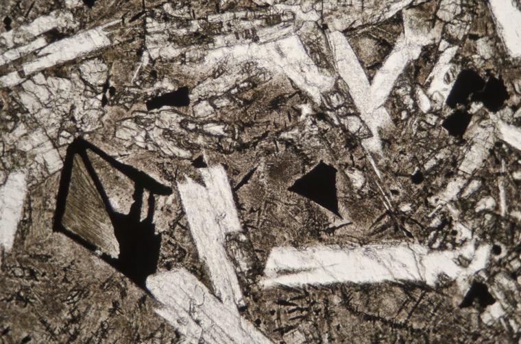 Iron-titanium oxides and linear textured mesostasis in the Acklington dyke tholeiite basalt. Sample viewed in plane polarised light at x25