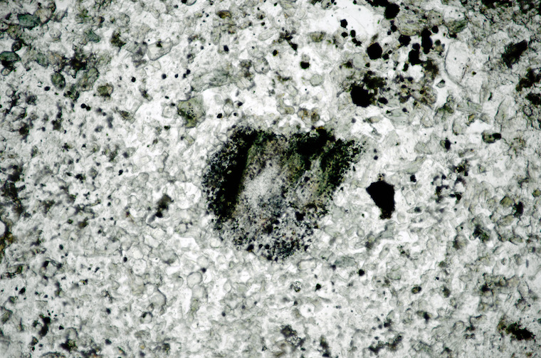 Orthopyroxene at location 2, Dunmoor Hill viewed in plane polarised light. The non-pleochroic crystal, much altered and darkened by opaques, is viewed in plane polarised light.(FoV 2.5 x 1.7 mm)