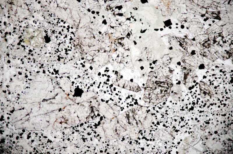 A pyroxene and feldspar glomerocryst enclosing a clear, polygonal-shaped area with many inclusions. Section viewed in plane polarised light. (FoV 1.2 x 0.8 mm)