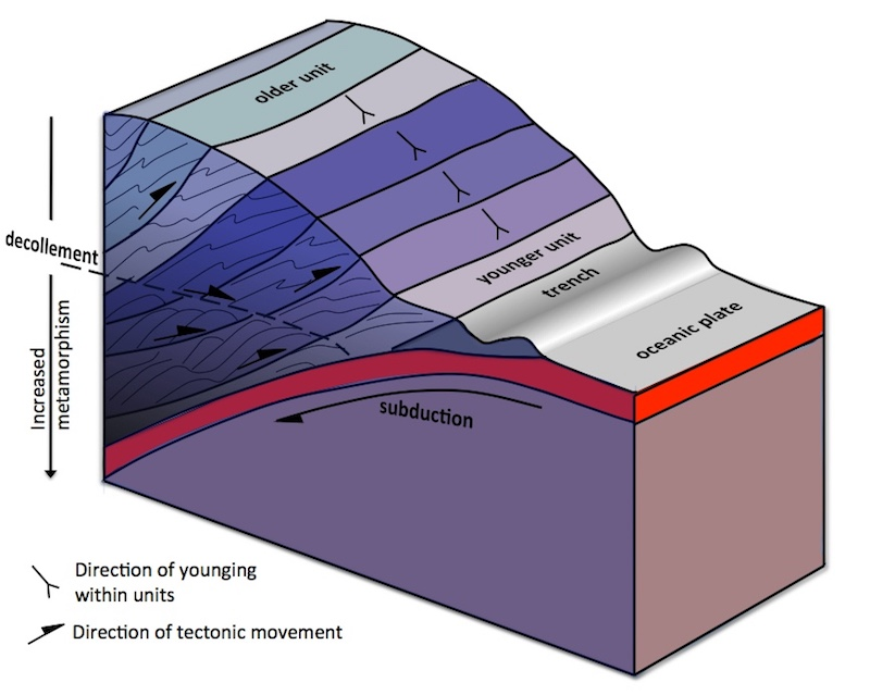 Model of section through the Southern Uplands Accretionary Complex