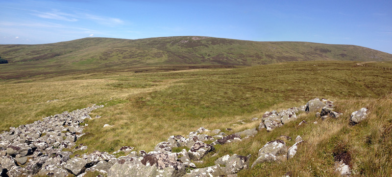Cheviot from Coldlaw Cairn