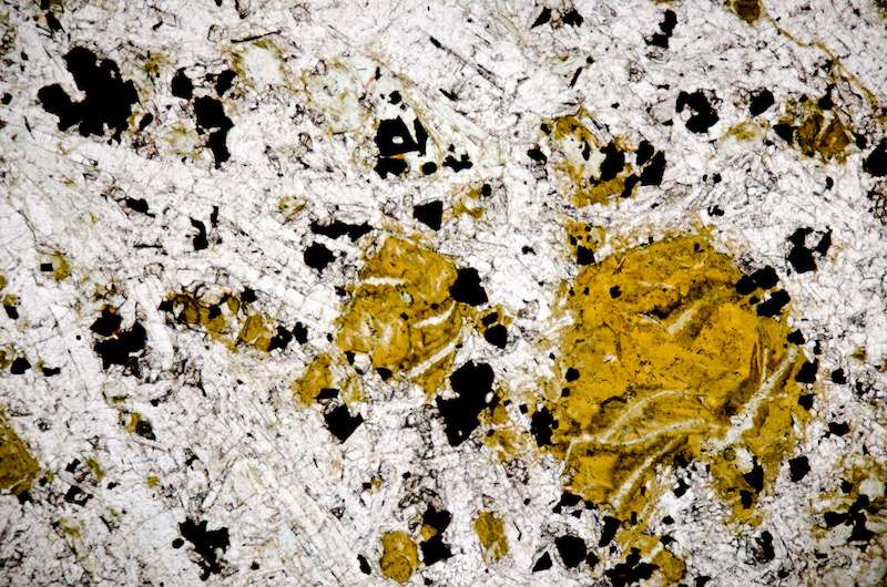 Yellow ochre coloured olivine alteration with sparse biotite in microgabbro, Dunion Hill. Section viewed in plane polarised light (FoV 2.3 x 1.5mm)