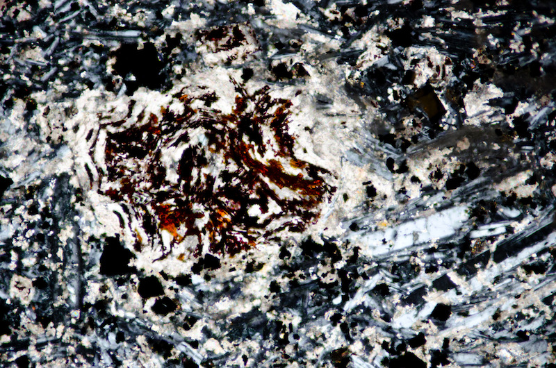 Altered phenocryst in carbonitised microgabbro  resulting in haematite, Dunion Hill. Section viewed with crossed polarising filters (FoV 1.2 x 0.8 mm)