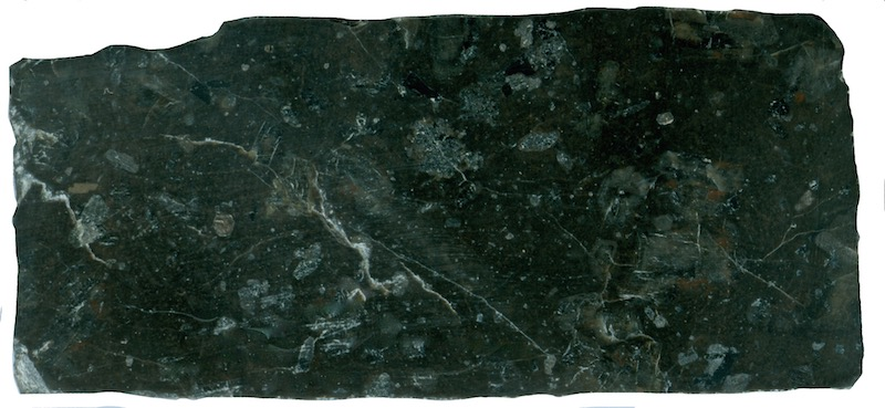 Very dark mafic material included or intruded in the medium-grained Central Belt rock at NT924162, High Cantle. Prepared hand specimen in ordinary reflected light