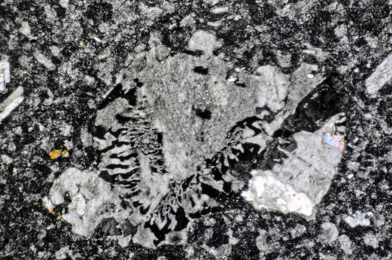 Granophyric microlith in mafic material included or intruded in the medium-grained Central Belt rock, High Cantle. Section viewed with crossed polarising filters
