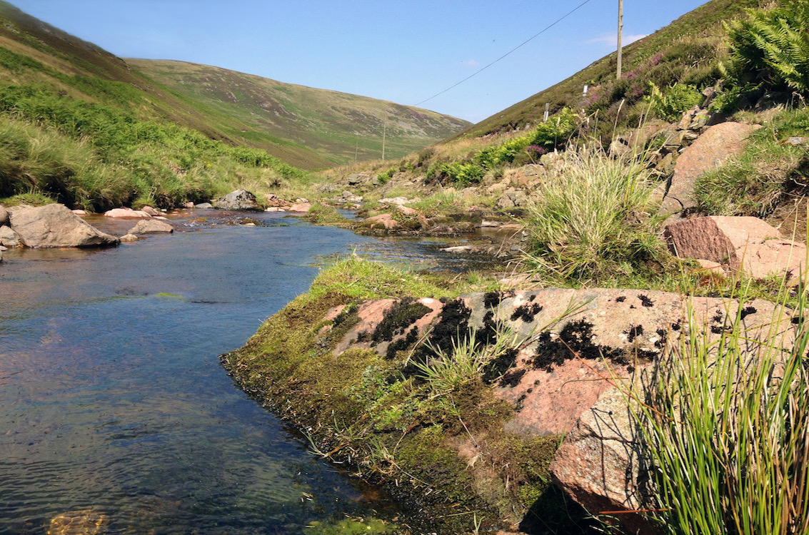 Quartz-porphyry dyke crossing the Breamish at Low Bleakhope