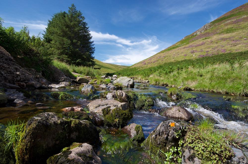 River Breamish adjacent to Low Bleakhope
