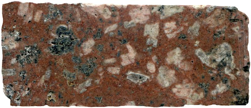 Altered porphyritic  rock at Low Bleakhope. Prepared hand specimen in reflected light (47mm across)