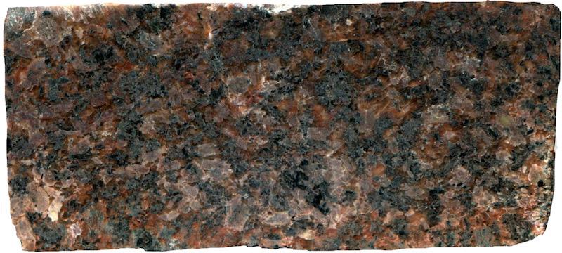 Marginal granitic rock on the Breamish near High Bleakhope. Prepared hand specimen in reflected light (45 mm across)