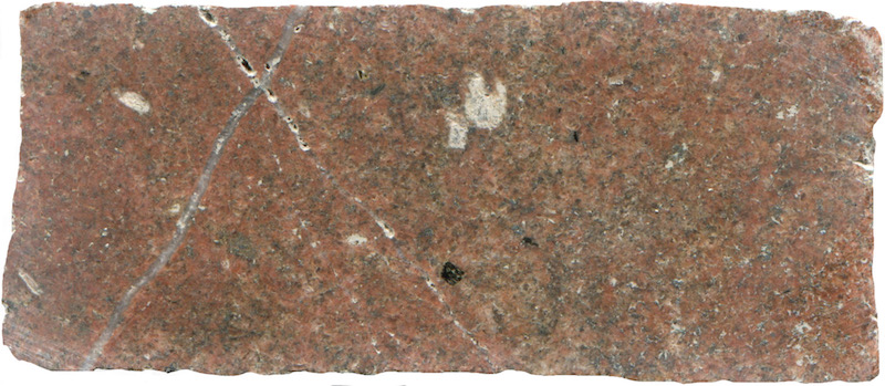 Medium-grained sub-equigranular granite, Hawsen Burn NT951227. Prepared hand specimen viewed in ordinary reflected light (46mm across)