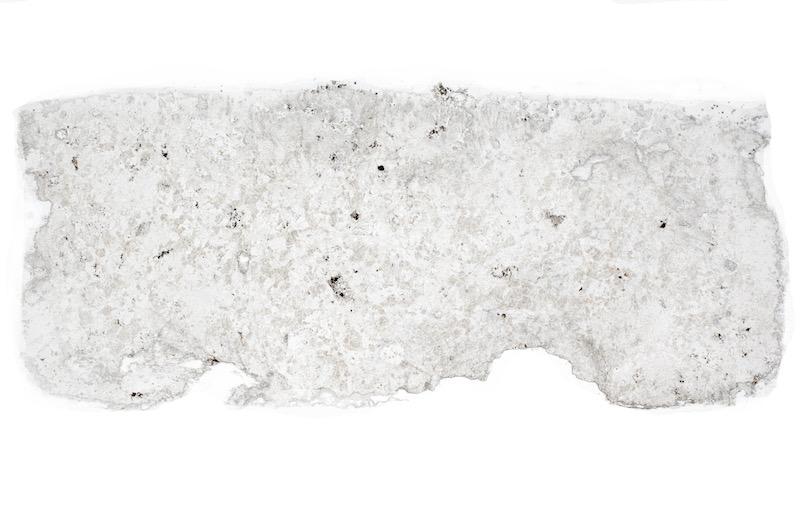 High quartz and alkali feldspar granite, Breamish Valley. Thin section viewed in plane polarised light (46mm across)