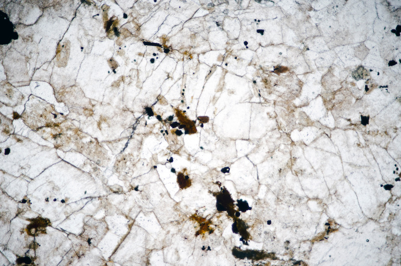 Alkali feldspar, quartz and iron-titanium oxides in medium-grained sub-equigranular granite, Hawsen Burn. Section viewed in plane polarised light (FoV 2.3 x 1.5 mm)