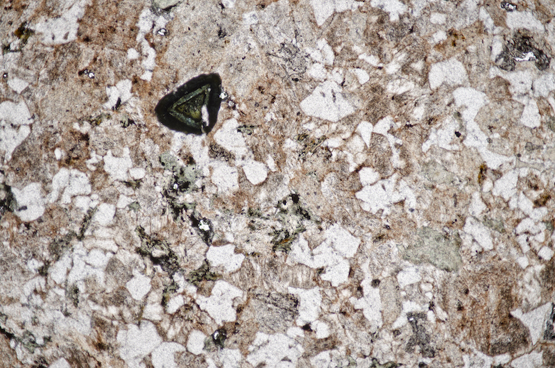 Mostly alkali feldspar and coarsely granophyric quartz with tourmaline in granite, Cheviot. Section viewed in plane polarised light (FoV 4.6 x 3.0 mm)