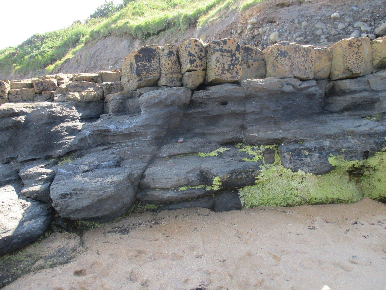 Blocks of limestone resting on shale.