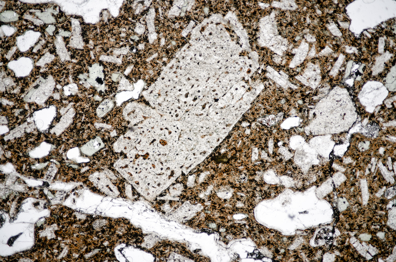 Embayed plagioclase crystal with altered inclusions with quartz, Brough Law. Section viewed in plane polarised light (FoV 2.3 x 1.5 mm)