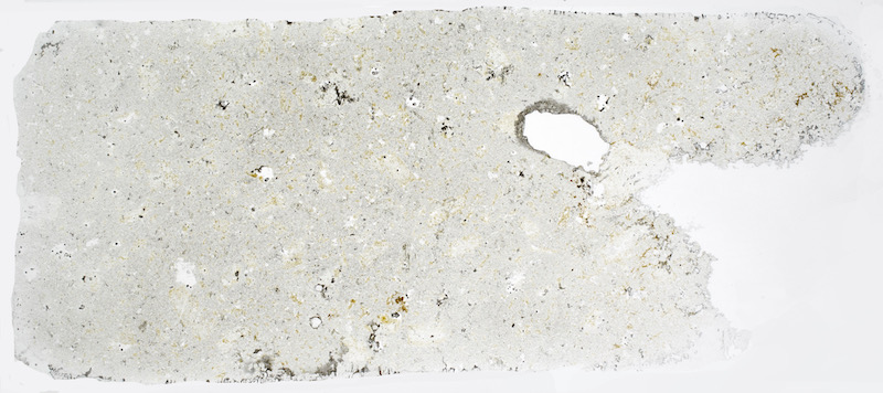 Altered rock, Goldscleugh, NT910208. Thin section viewed in plane polarised light (47mm across)