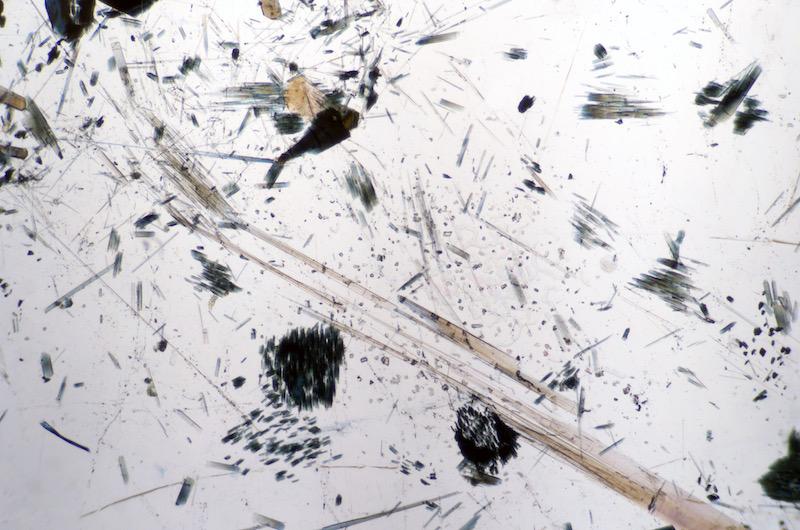 Acicular tourmaline in quartz viewed in plane polarised light (FoV 2.3 x 1.5 mm)