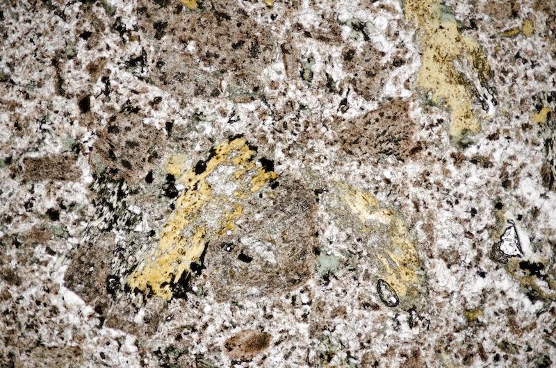 Altered biotite with feldspars in quartz-rich groundmass, Cheviot. Section viewed in plane polarised light (FoV 4.6 x 3.0 mm)