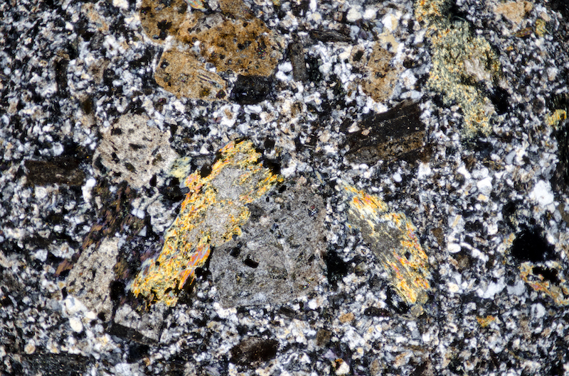 Altered biotite with feldspars in quartz-rich groundmass, Cheviot. Section viewed with crossed polarising filters (FoV 4.6 x 3.0 mm)