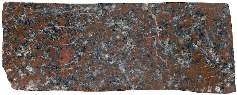 Fine-grained groundmass porphyritic Central Belt, Cheviot NT914206. Prepared hand specimen in ordinary reflected light (44mm across)
