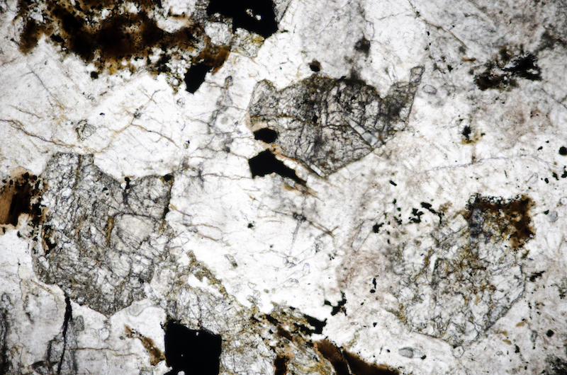 Altered clinopyroxene enclosed in plagioclase. Section viewed in plane polarised light (FoV 2.3 x 1.5 mm)