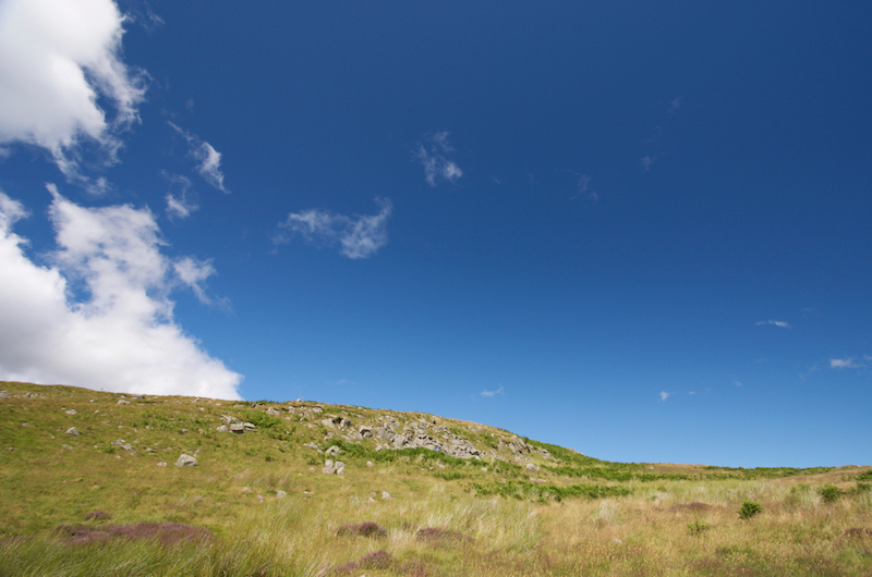 Outcropping coarse-grained Central Belt rock on Hedgehope Hill at NT949177.jpg