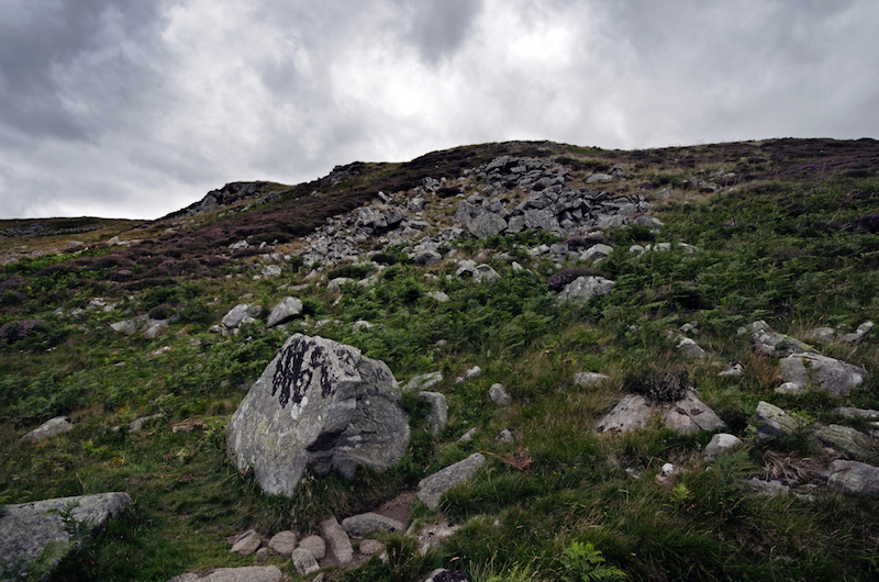 Boulders of coarse-grained Central Belt rock on Hedgehope Hill at NT944177