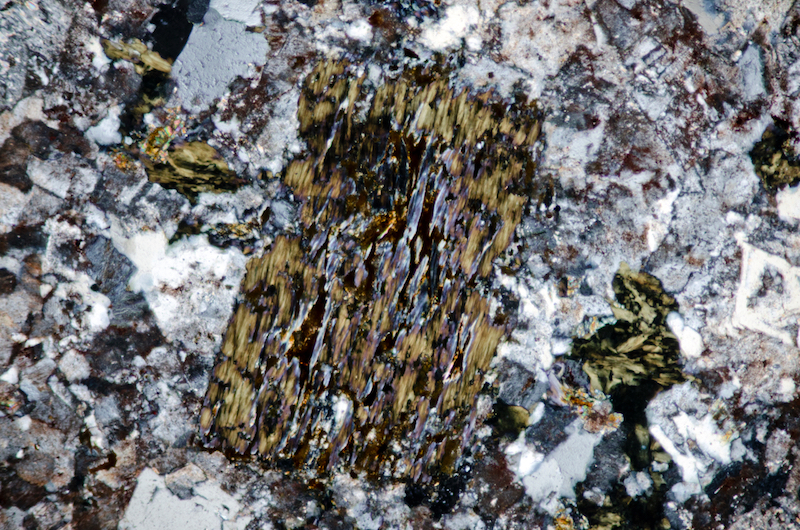 Chloritised biotite in the same sample. Section viewed with crossed polarising filters (FoV 2.3 x 1.5 mm)