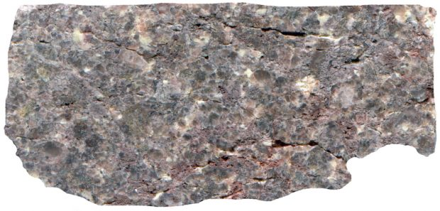 Extensively altered rock, Harthope Valley NT912190. Prepared hand specimen in ordinary reflected light.