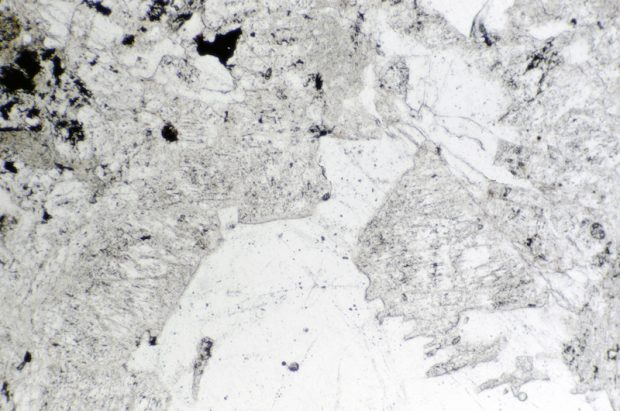 Quartz and feldspar in intensively altered rock, Harthope Valley NT912190. Section viewed in plane polarised light.