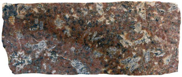 Altered Central Belt rock, Harthope Burn at NT909189. Prepared hand specimen in ordinary reflected light (42mm across)
