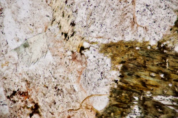 Chlorite and altered biotite. Section viewed in plane polarised light (FoV 2.5 x 1.7 mm)