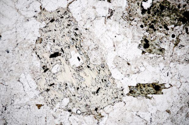 Chloritised biotite phenocryst with quartz and feldspar at location 10. Section viewed in plane polarised light (FoV 4.6 x 3.0 mm)