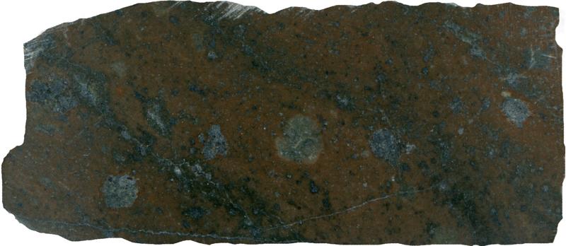 Altered andesite, Low Bleakhope NT935154. Prepared sample viewed in plain reflected light (47mm across)