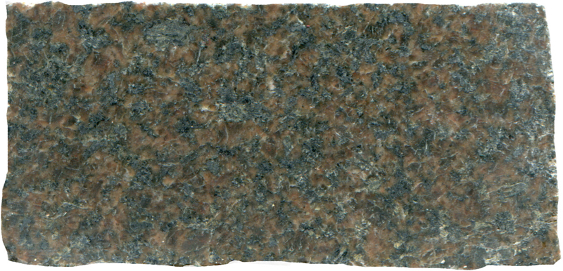 Sub-equigranular granite with an even higher mafic content. Low Bleakhope NT939159. Prepared sample viewed in plain reflected light (38mm across)